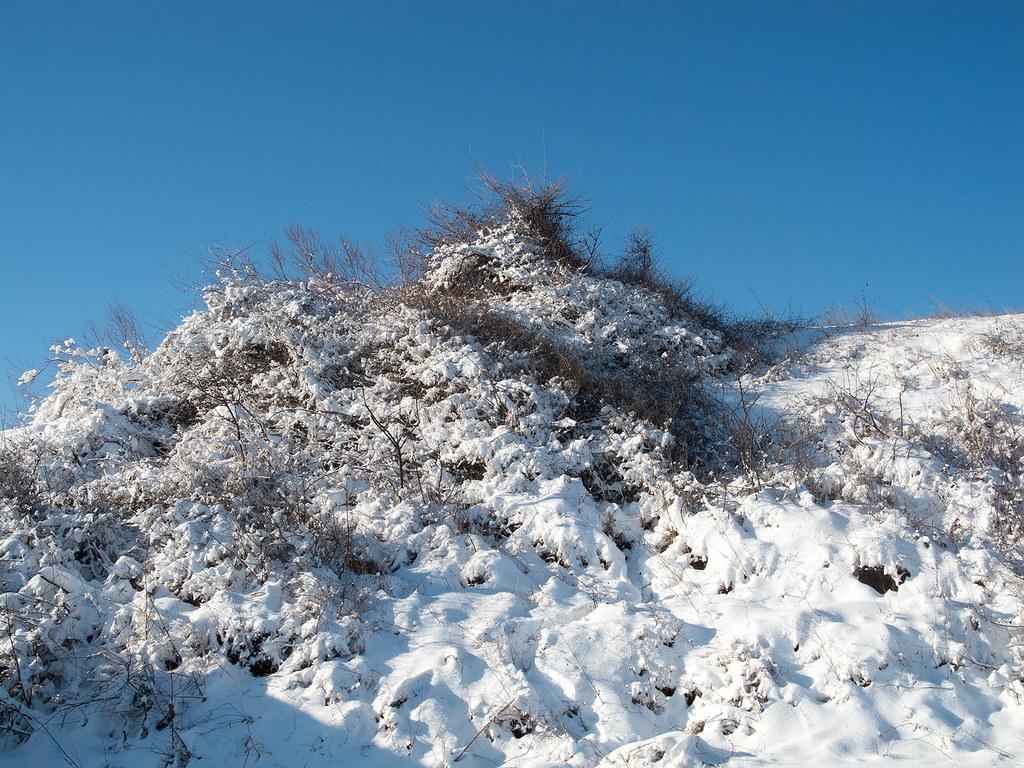 фото: Snow dunes