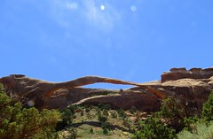 Landscape Arch, Arches National Park, June 2016 (Judith B. Gandy (on and off, off and on)) Tags: arches parks rocks geology landscape utah archesnationalpark rockformations landscapearch ngc