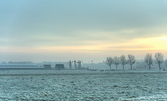 Birds on the run. (Alex-de-Haas) Tags: smorgens 50mm alexdehaas d5 dutch hdr holland january nederland nederlands netherlands nikkor nikkor50mm nikon nikond5 noordholland thenetherlands westfriesland clouds cold daglicht damp daylight farmfields farmlands fog foggy frost handheld haze hazy highdynamicrange hoarfrost ice icy januari koud laaghangendebewolking landscape landscapephotography landschap landschapsfotografie licht light meadows mist mistig misty morning nevel nevelig ochtend overdag polder rijp watervapor waterdamp weiland winter wolken