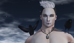 Perception (Broderick Logan) Tags: seven sevenmenshair tmd mensdept themensdepartment moh9 menonlyhunt9 swallow crows quote noedition realevil nivaro blackfair wedosl goth sl secondlife second life avatar virtual blog blogger