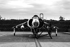 A monochrome Harrier (Andrew Edkins) Tags: gr3 harrier aircraft fighter bomber airframe verticaltakeoff timelineevents canon photoshoot photography reenactor people cosford raf flight staticdisplay airbase airplane geotagged shropshire england 2017 april spring afternoon light bw blackandwhite flying military sky clouds war warplane artic photo museum pilot
