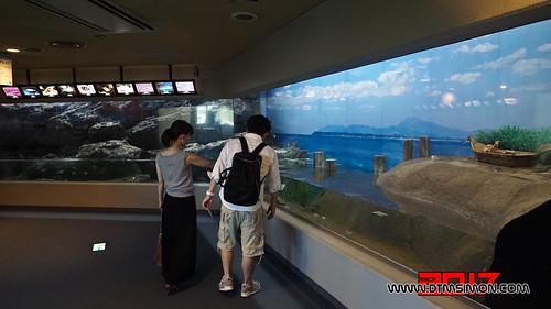 品川水族館34.jpg