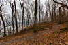 Hiking Trail at Frontenac State Park (Tony Webster) Tags: frontenac frontenacstatepark lakepepin minnesota mississippiriver earlyspring forest leaves spring statepark trees unitedstates us