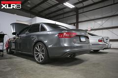 APR Ultracharger 3.0T (Excelerate Performance) Tags: 30t apr ultracharger aprultracharger boostnoodle goapr aprtuned apraudi audis4 b8 b85 s4 s5 q5 q7 a6 audizine connecticut excelerateperformance europeanperformance xlr8 ct connecticutsfinest service performancerepair b8s4 b85s4 b85s5 aprsoftware dsgtuning crbonefiber aprintake stage2 dualpulley 187mmcrankpulley odpulley