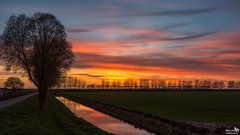 April sunset after glow (BraCom (Bram)) Tags: bracom cloud afterglow wolk nagloed trees bomen ditch sloot reflections spiegeling field akker road weg dike dijk sky evening avond silhouettes landscape landschap silhouetten melissant goereeoverflakkee zuidholland nederland southholland netherlands holland canoneos5dmkiii widescreen canon 169 canonef24105mm bramvanbroekhoven nl