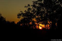 Sunset - Santa Maria-RS (Enilton Kirchhof) Tags: santamaria riograndedosul brazil br sunset silueta pordosol brasil brasilemimagens