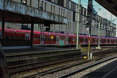 _DSC8728 (Under Color) Tags: hannover graffiti train zug db strain sbahn subway streetart art kunst hbf mainstation hauptbahnhof germany deutschland niedersachsen subwayart graff vandal