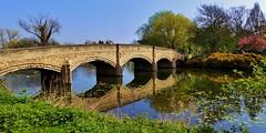 Bridge over the River Soar (Dieseldog05) Tags: abbey park leicester bridge river soar relection