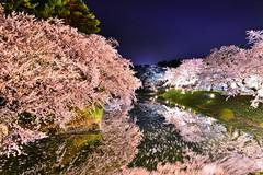 夜櫻吟(DSC_9692) (nans0410(busy)) Tags: japan aomori sakura cherry blossom reflection scenery outdoors hirosakicastle flower river spring 日本 青森縣 櫻花 吉野櫻 倒影 弘前市 弘前城 春天