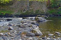 stepping stones (Lord Edam) Tags: river afon llugwy conwy wildlife morning water rocks fields