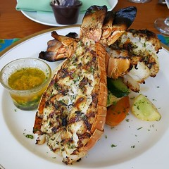 When in Costa Rica, you must eat lobsters! #dotcomlunch #DotComLifestyle