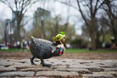 Easter hat (leemik) Tags: sony a7r meyer gorlitz domiron 502 50mm f2 boston marathonmonday patriotsday 2017 bostoncommon publicgardens