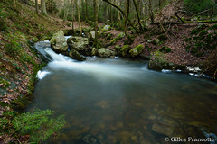 Chefna river. (gillesfrancotte) Tags: 2017 amblève ardennes aywaille chefna d800 nikon outdoor quarreux stoumont cascade creek eau fall landscape longexposure nature printemps spring stream torrent water waterfall waterscape wallonie belgique nikonpassion