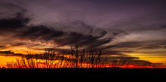 New Mexico Sunset (nclint) Tags: newmexico sunset lastlight bernalillonewmexico landscapes cloudsstormssunsetssunrises