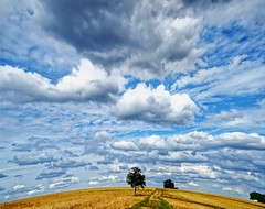 Die Erde ist eine Scheibe oder am Ende der Welt. The earth is a slice or at the end of the world. (bianka.spindler) Tags: erde scheibe welt horizont wolken felder niefern enzkreis baden württemberg sommer landschaft ernte earth disk world horizon clouds fields summer landscape harvest sonya7r