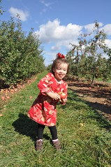 2014-10-18 10.57.14 (whiteknuckled) Tags: pumpkin lily farm homestead applepicking outing 2014 poolesville
