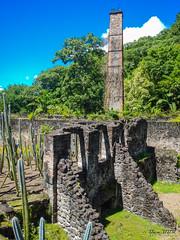Martinique - Zoo du Carbet (Ben.2BR) Tags: zoo martinique saintpierre carbet fwi lecarbet 201410mebt
