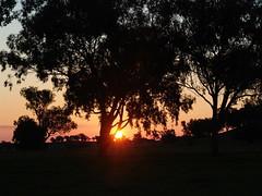 Albury 016 (mart.panzer) Tags: sunset vacation people holiday nature sunrise sonnenuntergang photos top awesome scenic australia victoria highlights best impressions australien sonnenaufgang albury mustsee wodonga mostbeautiful martinpanzer gerhardpanzer