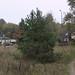 zeesen-friedenstrasse_fz50_1160605