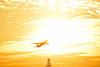 Fly to the sun (SteveC123!) Tags: sky sun toronto yellow plane golden evening nikon glow v2 skycloudssun