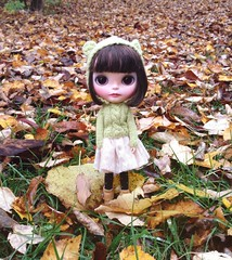 BaD October- Fall Colors