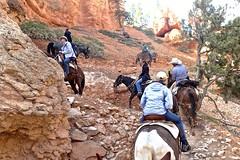 P9080502 (bluegrass0839) Tags: canyon national hoodoo bryce zion zionnationalpark brycecanyon nationalparks narrows hoodoos horsebackride parkthe
