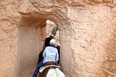 P9080291 (bluegrass0839) Tags: canyon national hoodoo bryce zion zionnationalpark brycecanyon nationalparks narrows hoodoos horsebackride parkthe
