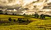 Pleasant valley Sunday. (AlbOst) Tags: clouds skies fences farmland crops auchterarder greenbeautyforlife