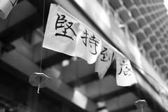 Umbrella Revolution (Ryuzaki.at.mono) Tags: street leica umbrella 35mm hongkong hong kong 25 revolution m8 kok mong summarit m82