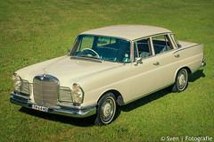 Mercedes 220 SE (Traveling together) Tags: auto travel white car newcastle mercedes australia rudy bella wit sven downunder 1964 reizen fida wildschut australië 220se svenfotografienl