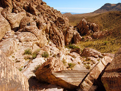 "Ancient eroded red ridge • <a style=""font-size:0.8em;"" href=""http://www.flickr.com/photos/34843984@N07/15361047140/"" target=""_blank"">View on Flickr</a>"