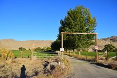DSC_3545 (jjldickinson) Tags: ranch shadow selfportrait campus bicycling highway gate desert highdesert metaphotography deepsprings sr168 inyomountains deepspringscollege jacobdickinson deepspringsvalley swingingtranch nikond3300 stateroute168 promaster52mmdigitalhdprotectionfilter 100d3300 nikon1855mmf3556gvriiafsdxnikkor deepspringsranchroad