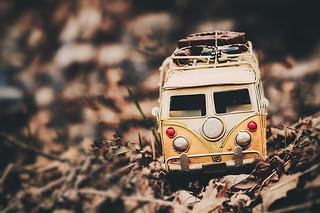 Minivans can also enjoy fall:)