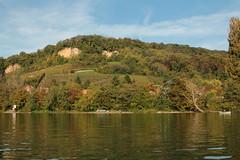 Schlauchboot Sevylor Supercaravelle XR86GTX ( Super - Caravelle - Gummiboot ) auf dem Rhein ( Hochrhein - Fluss - River ) zwischen W.ehr A.ugst - W.hylen und W.ehr B.irsfelden im Kanton Basel Landschaft in der Schweiz (chrchr_75) Tags: chriguhurnibluemailch christoph hurni schweiz suisse switzerland svizzera suissa swiss chrchr chrchr75 chrigu chriguhurni 1410 oktober 2014 albumzzzz141019rheinrheinfeldenbirsfelden hurni141019 oktober2014 gummiboot gummiboote schlauchboot schlauchboote boot jolle dinghy boat jolla canot  sloep bote albumschlauchbootegummibooteunterwegsinderschweiz btle sevylor super caravelle supercaravelle xr86gtx rhein rhin reno rijn rhenus rhine rin strom europa albumrhein fluss river joki rivire fiume  rivier rzeka rio flod ro