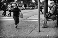_DSC2260-Edit.jpg (Terry Cioni) Tags: vancouver collingwood tc sonyrx1r