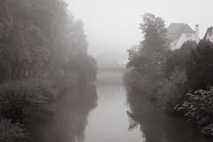 Neckarbrücke (stefanheymann) Tags: nebel sw neckar tübingen neckarbrücke platanenallee