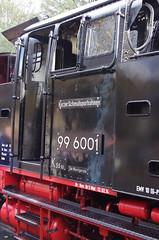 IMGP6286 (Steve Guess) Tags: train germany deutschland d railway steam gauge narrow hsb harzer schmalspurbahnen selketalbahn