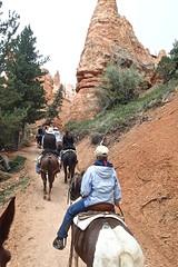 P9080260 (bluegrass0839) Tags: canyon national hoodoo bryce zion zionnationalpark brycecanyon nationalparks narrows hoodoos horsebackride parkthe