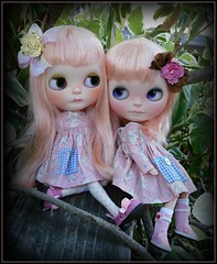 Jelly and Birdie♥