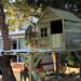 La casa del arbol1
