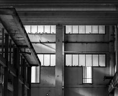 _MG_1404 (edoardodinicola) Tags: life street bw abandoned industry canon photo strada noir foto shot pics snap bn industria bianco nero bnw impressive magnum vita abbandonato 550d