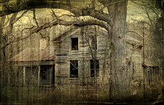 Condemned From Life (Urban Art District) Tags: old brown house building rot texture abandoned sepia dead scary rust mud earth decay mixedmedia tan sienna evil auburn haunted hazel copper chestnut rotten ochre brass umber ecru lifeless