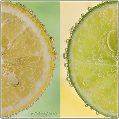 Lemon Lime (skippys1229) Tags: green yellow canon square lemon diptych florida border bubbles squareformat half citrus lemonslice lime fizzy ocala 2014 marioncounty hss limeslice 70d sliceoflemon ef70300mm 4152 sliceoflime ocalaflorida 52weeksproject canon70d sliderssunday 52weeksof2014