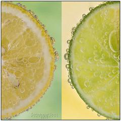Lemon Lime (skippys1229) Tags: green yellow canon square lemon diptych florida border bubbles squareformat half citrus lemonslice lime fizzy ocala 2014 marioncounty hss limeslice 70d sliceoflemon ef70300mm 4152 sliceoflime ocalaflorida 52weeksproject canon70d sliderssunday 52weeksof2014