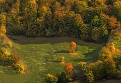 Fall (mel hagai photography {been away}) Tags: fall colors romania sonya7 outstandingforeignphotographersvisitingromania melhagaiphotography