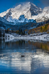 Duck in the middle! (tyil.pics) Tags: shadow mountain lake reflection clouds colorado fallcolors maroonbells