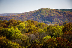 Maramec Spring Park (Notley) Tags: park trees reflection fall water rural forest spring october fallcolors country reflect ozarks 2014 10thavenue ruralmissouri notley notleyhawkins missouriphotography maramecspringpark phelpscountymissouri httpwwwnotleyhawkinscom notleyhawkinsphotography