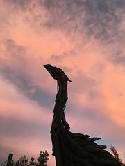 Moa Dawn 2 New Zealand (eriagn) Tags: artist bird driftwoodmodel driftwoodart outdoor outside sky iphone silhouette cloud sunrise dawn jackmarsdenmeyer driftwood art ngairehart moa newzealand littlestories picswithsoul