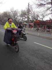 réveil difficile (jffourmond) Tags: beijing china chine hutong pékin scooter