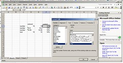 custom_format_solution (DrJohnBullas) Tags: excel custom format add percentage sign after any cell entry